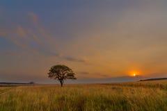 уединённый вал захода солнца Стоковые Изображения