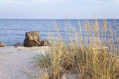 Уединённый валун на пляже Стоковые Изображения RF