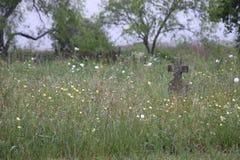 Уединённый надгробный камень Стоковая Фотография RF