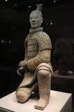 Уединённый ратник Стоковое фото RF