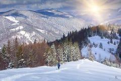 Уединённый hiker с рюкзаком идя вдоль следа в горах зимы Стоковое Изображение RF