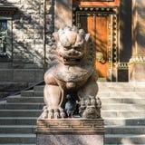 Ужасный лев в виске Будды, виска буддистов и своего центрального двора концепция мирного вероисповедания стоковое фото