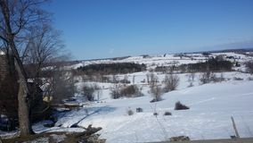 уже начинать имеет иметь вверх просыпанное thawn весны снежка заводов озера льда hibernation не присутствующее все еще Стоковая Фотография RF