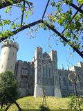 лужки Англии замока arundel окружая Сассекс осмотрели запад Стоковое Изображение