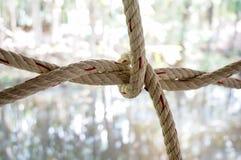 Узел веревочки нейлона Стоковые Изображения