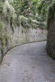 Узкая дорога с цветками в Сорренто, Италии Стоковая Фотография RF