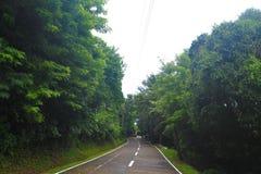 узкая дорога Стоковые Изображения RF