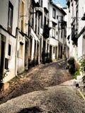 Узкая улица булыжника в Португалии Стоковые Изображения