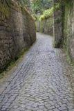 Узкая улица в Сорренто, Италии Стоковое Фото