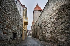 Узкая улица в старом Таллине Стоковое Фото