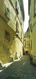 узкая улица Стоковые Изображения RF