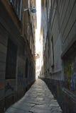 узкая часть переулка Стоковые Фотографии RF