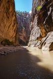 Узкие части в национальном парке Сиона, Юте, США Стоковое фото RF
