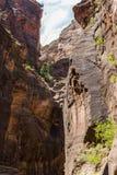 Узкие части в национальном парке Сиона, Юте, США Стоковая Фотография RF