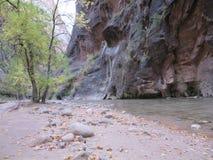 Узкие части, национальный парк Сиона, Юта Стоковые Изображения RF