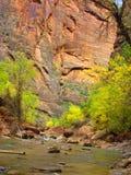 Узкие части, национальный парк Сиона, Юта Стоковая Фотография RF