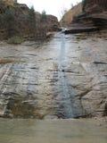 Узкие части, национальный парк Сиона, Юта Стоковые Изображения