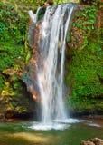 Узкий водопад Стоковое Изображение