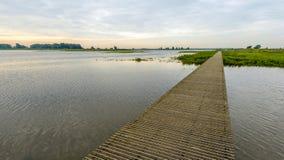 Узкий деревянный footbridge над водой заповедника Стоковое фото RF