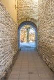 Узкий каменный коридор Стоковое Изображение RF