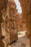 Узкий каньон размывания на горе Koranna около эксцельсиора Стоковые Фотографии RF