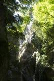 Узкий каньон ущелья Стоковое Изображение