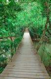 Узкий пешеходный мост Стоковое фото RF