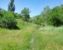Узкий путь дальше среди травы к камням Стоковые Изображения