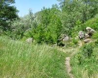 Узкий путь дальше среди травы к камням Стоковое Изображение RF