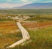 Узкий путь в горах Стоковая Фотография