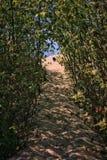 узкий путь Стоковая Фотография