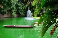 Узкое старое каноэ на зеленой воде в пруде против яркой растительности субтропических заводов стоковые фотографии rf
