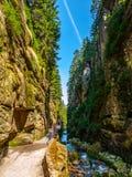Узкое ущелье под водопадом в гигантских горах, Польшей Kamienczyk Стоковое фото RF