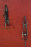 Уздечки лошади на красной стене стоковое фото rf
