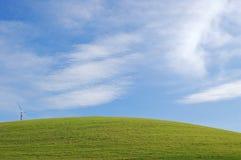 указанная трава камеры Стоковые Изображения RF
