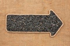 Указатель сделанный от веревочки при семена подсолнуха лежа на дерюге Стоковые Фотографии RF