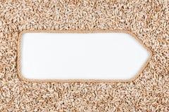 Указатель сделанный от веревочки при солнцецвет семян лежа на белой предпосылке Стоковое Изображение