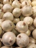 луки белые Стоковая Фотография