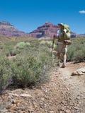 укладывая рюкзак hiker каньона грандиозный Стоковые Изображения