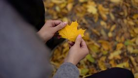 Укомплектуйте личным составом держать красивые желтые лист, думая около в прошлом, ностальгия, осень золота стоковая фотография rf