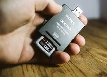 Укомплектуйте личным составом держать новую карту памяти XQD читателем карточки Сони Стоковая Фотография