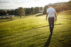 Укомплектуйте личным составом играть гольф на поле для гольфа в солнце Стоковые Изображения
