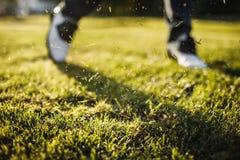 Укомплектуйте личным составом играть гольф на поле для гольфа в солнце Стоковая Фотография