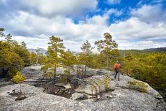 Укомплектуйте личным составом идти к озеру в лесе Стоковое фото RF