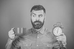 Укомплектуйте личным составом кофе или чай утра питья с будильником Стоковое Изображение RF