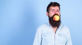 Укомплектуйте личным составом красивый битника с длинной бородой есть яблоко Питание диеты человека ест плодоовощ Идея закуски пл Стоковое фото RF