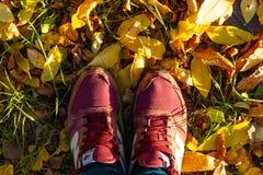 Укомплектуйте личным составом ноги ` s в новых тапках баланса на листьях осени стоковое фото rf