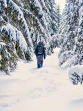 Укомплектуйте личным составом пеший туризм на лесе зимы снежном с рюкзаком Перемещение, пригонка стоковое фото