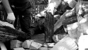 Укомплектуйте личным составом прерывать древесину с осью на день осени сток-видео