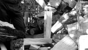 Укомплектуйте личным составом прерывать древесину с осью на день осени видеоматериал